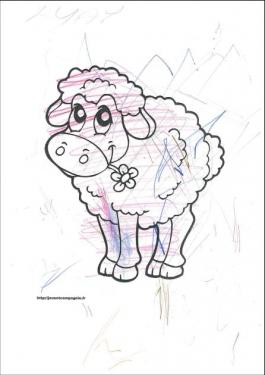 Le mouton de Lyay